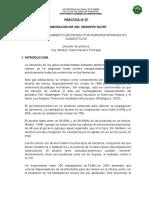 Practica PPAN N°07 - Elaboracion de gel desinfectante