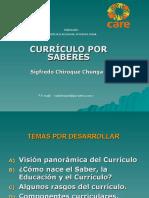 4. PUNO_CURRICULO_POR_SABERES
