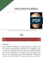 Traumatismo Crânio Encefálico.pdf
