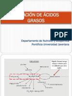OxidaciónAcidosGrasos_EB