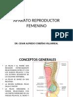 APARATO REPRODUCTOR FEMENINO 2020 anatomia PDF