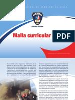 41772_Malla_curricular_ok