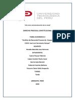 Analisis Proceso de amparo-1 (1).docx
