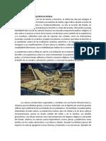 Origen de la Arquitectura Azteca[67587]