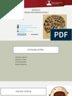tecnicas para tabajar el duelo en niños en desastres completo 1.pptx