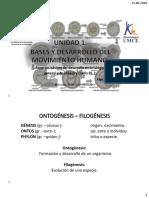 Embriologia General de Cabeza y Cuello