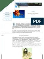 FÍSICA_ Las fuerzas y el equilibrio_ Introducción