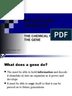 01 Molecular Genetics