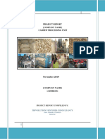 Small_Scale_Cashew_Processing - sample project report.pdf
