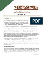 DÍA 338 - 365 días para leer la Sagrada Escritura