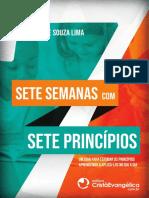 sete semanas com principios.pdf