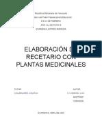 elaboracion de recetario con plantas medicinales