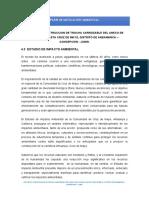 PLAN DE IMPACTO AMBIENTAL CRUZ