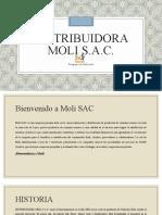 Inducción Moli SAC (003).ppt