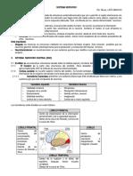 3.SISTEMA NERVIOSO.docx