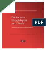 P_6_Diretrizes_Educacao_Especial_Varios.pdf