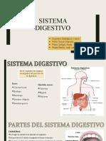 ABP Digestivo (1)