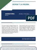 LOS HECHOS Y LA PRUEBA.pptx
