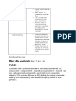 Amiloid in rinichi - Polip adenomatos in colon