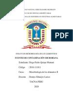ENSAYO DE MICROBIOLOGIA II.pdf