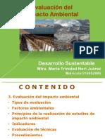 Sem  3  Evaluación del Impacto Ambiental