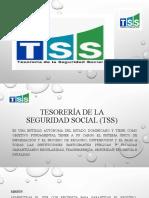 TESOREIA DE LA SEGURIDAD SOCIAL (TSS)