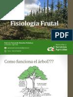 Fisiología Frutal P.Morales 2016