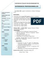 Cv Fosso QT HG.docx