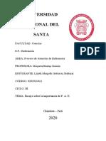 ENSAYO SOBRE LA IMPORTANCIA DE PAE.docx