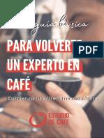 La guía básica para volverte un experto en café
