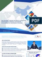 BR Initiative_standart_20200313.pdf