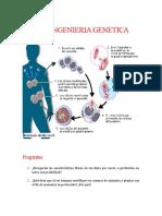 INFOGRAFIA DE INGENIERIA GENETICA
