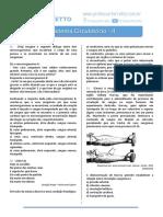 questo_es_-_sistema_circulato_rio_-_ii.pdf