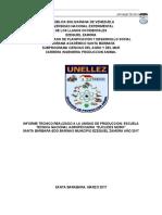informe tecnico LISTO.docx