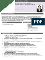 CV_ANDIA MARRON.pdf