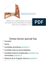 ANGIOLOGIA.ppt
