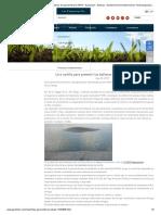 Una cartilla para prevenir las ballenas de geomembrana HDPE - Exposición - Noticias - Geotrst Environmental Science Technology (Shanghai) Co., ltd