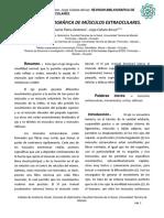 TRABAJO DE INVESTIGACION, MÚSCULOS EXTRAOCULARES..pdf