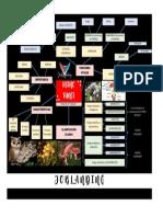 REINO FUNGI - blackmode.pdf