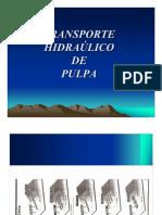 Clase Transporte de Pulpa