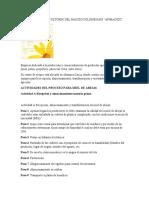 Analisis de procesos APIMACIZO