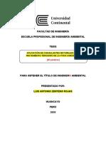 Modelo para tesis completo  UC