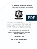 tesis biomasa de planta tahuari POR LEYDI FLORES LOZANO salud.pdf