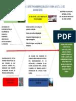 CUIDADO Y PROTECCION MEDIO AMBIENTE