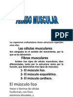 Musculo-primera-parte