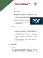 INFORME-Limite-Plastico.docx