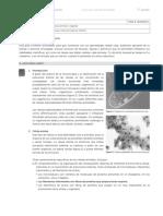 Guia_autoaprendizaje_estudiante_7mo_grado_Ciencia_f3_s6_impreso