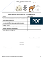 Adaptation - Worksheet_Revision aid _ Teaching Resources