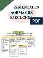 MAPAS MENTALES NIA DE EJECUCIÓN