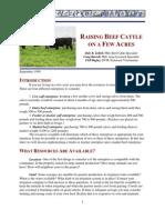 Cattle Few Acres